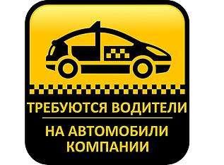Водитель такси на авто компании title=