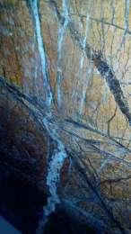 Мраморные полированные слябы 450 шт, 25 различных расцветок