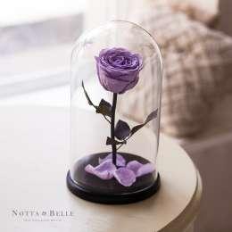 Роза в стеклянной колбе Фиолетовый аметист title=
