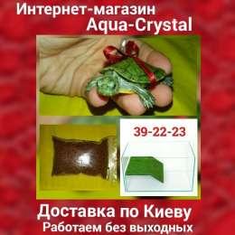 Маленькие красноухие черепашки 4-5см.Доставка по Киеву.