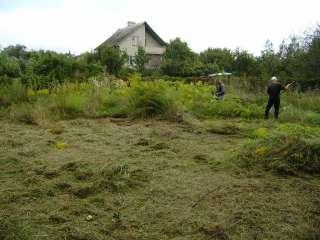 Профессиональный покос травы и сорняков Винница