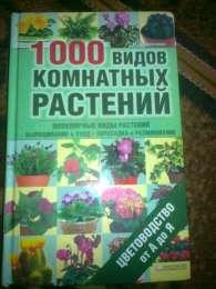 1000 видов комнатних  растений от а до я title=