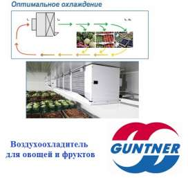 Воздухоохладители для хранения фруктов и овощей