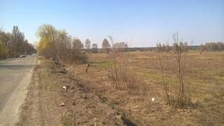 Продається фасадна земельна ділянка (ОСГ), площою 9 га. title=