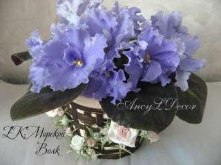 Фиалки сортовые, детка стартер ЕК-Морской Волк, огромные голубые цветы
