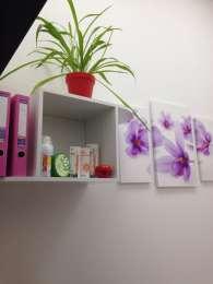 Полка для цветов, книг ПН-3