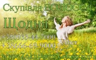 Продати волосся в Ужгороді дорого Куплю волосся в Ужгороді