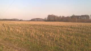 Продам земельну ділянку в Київській області,20Га.(ОСГ). title=