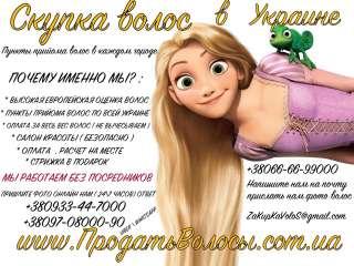 продать волосы  Днепр Парикмахерская Милашка Купим волосы в Днепре