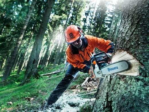 Нужна бригада вальщиков леса
