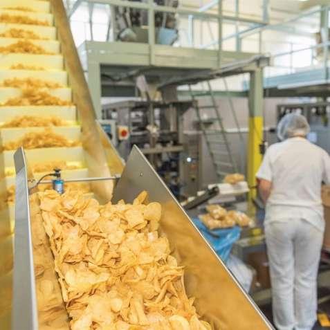 Работа на производстве картофельных чипсов в Чехии