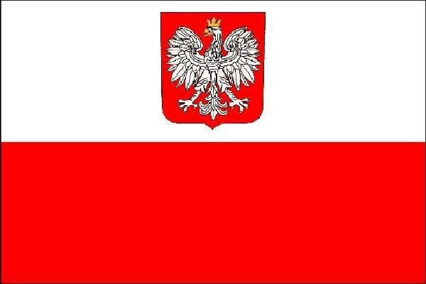 Перевод и редактирование носителями польского языка