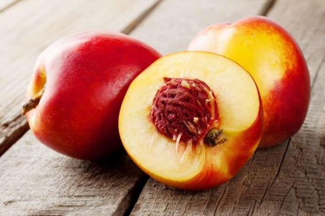 Саженцы Плодовых Деревьев (2х летние)