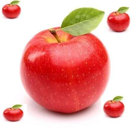 сдам в аренду яблоневый сад Днепр Чумаки