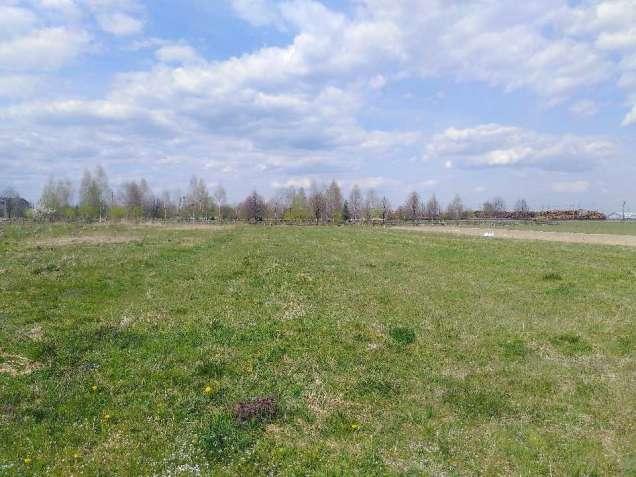 796142 Продам землю сельскохозяйственного назначения Рожнятовский, Бро