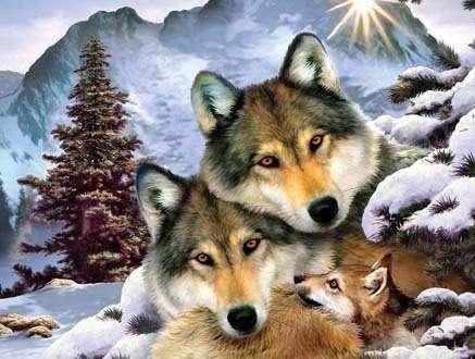 Алмазная вышивка/мозаика 30х40 Волки зимой, полное заполнение