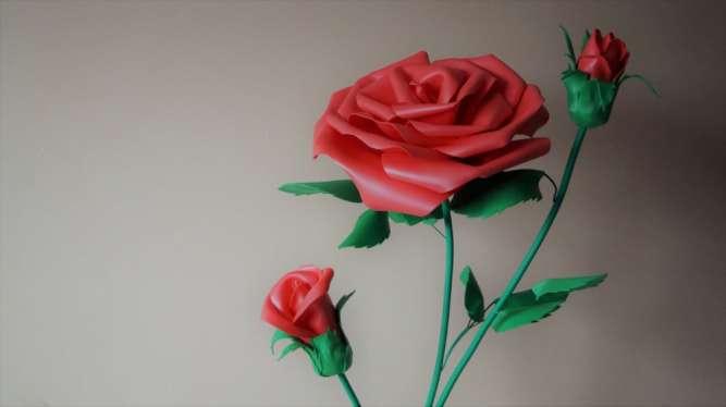 Роза красная (ростовые цветы)