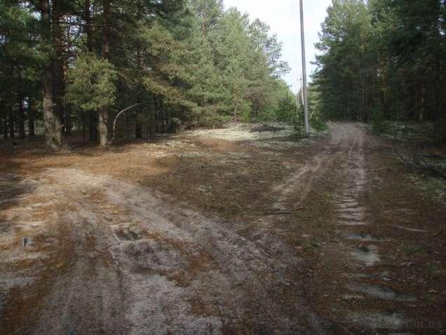 Дачный участок в Загальцах, Киевская область, Бородянский район