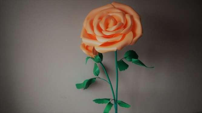 Оранжевая роза (ростовые цветы)