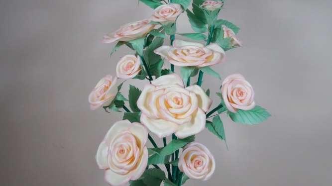 Куст нежных роз с изолона (ростовые цветы)