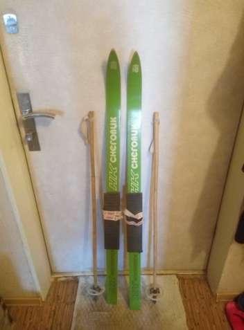 Лыжи обыкновенные