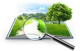 Проходження процедури оцінки впливу на довкілля ОВД