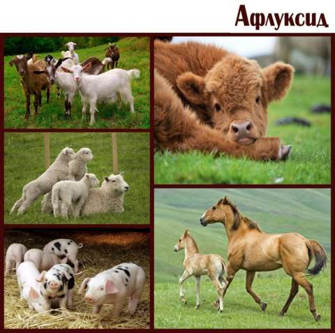 Антидиарейная кормовая добавка - Афлуксид