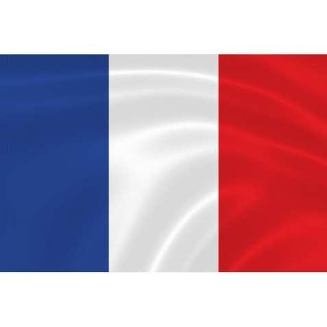 Квалифицированный переводчик французского языка