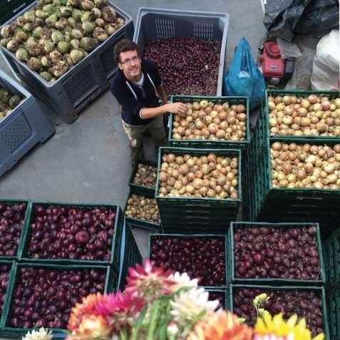 Работа на овощном складе в Чехии