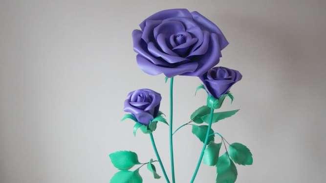 Куст фиолетовой розы