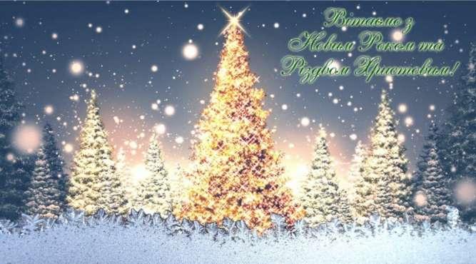 тур в Карпаты на Рождество из Киева, Буковель на Рождество из Киева