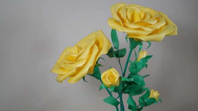 Куст желтой розы (огромные цветы)