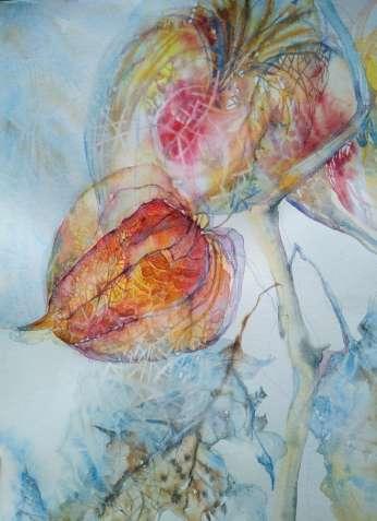 Картина акварелью Физалис