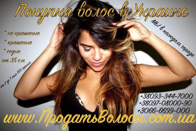 Продать волосы в Одессе дорого Куплю волосы в Одессе Скупка волос