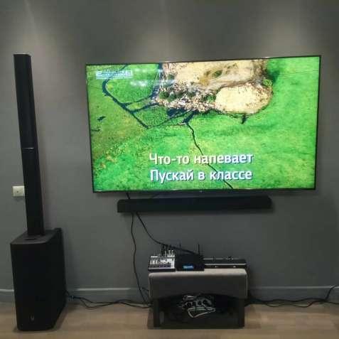 Караоке-система для дома Evolution Lite2 от производителя!