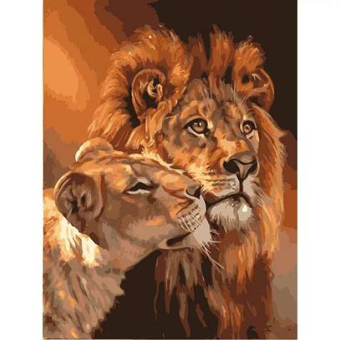 раскраска картина по  номерам Львы,  размер 40*50, без подрамника