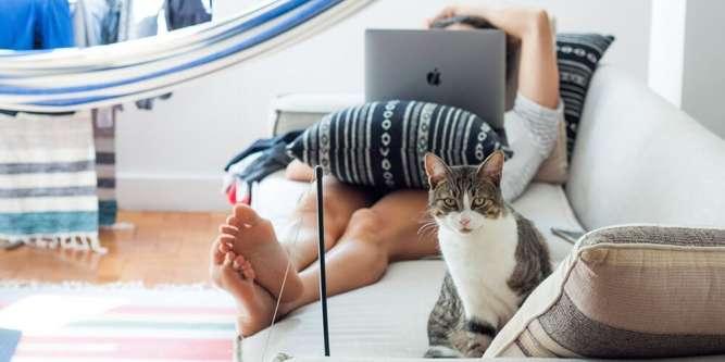 девушки на работе онлайн