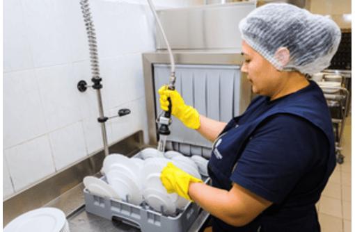Посудомойщица, выплати ежедневно