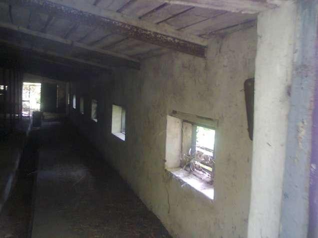 Нежитлова будівля (свинарник)