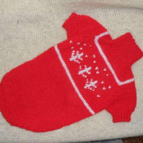 Новогодний свитерок для небольшой собачки.