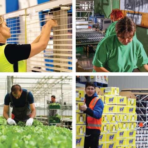 Работа для женщин и мужчин, и семейных пар, разнорабочими в Литве